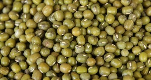Legumes, Grains, Grasses