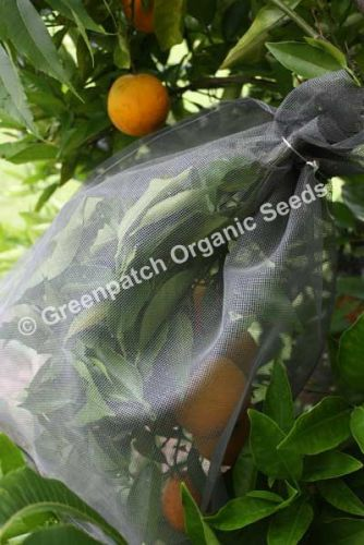 Fruit Fly Exclusion Bags Small