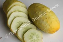 Cucumber - German Pickling